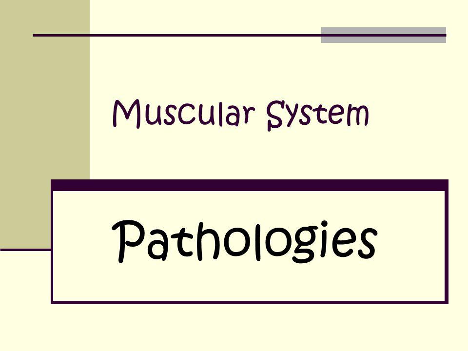 Muscular System Pathologies