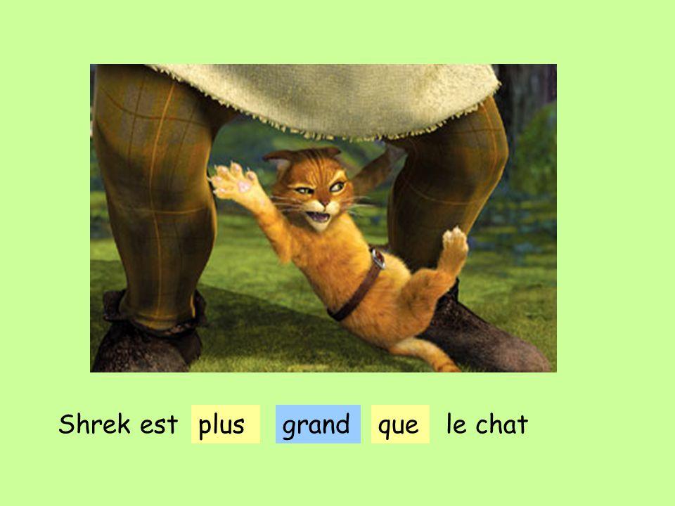 grandShrek estplusquele chat