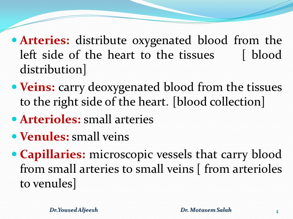 Systemic and Pulmonary Circulation Dr.Yoused Aljeesh Dr. Motasem Salah