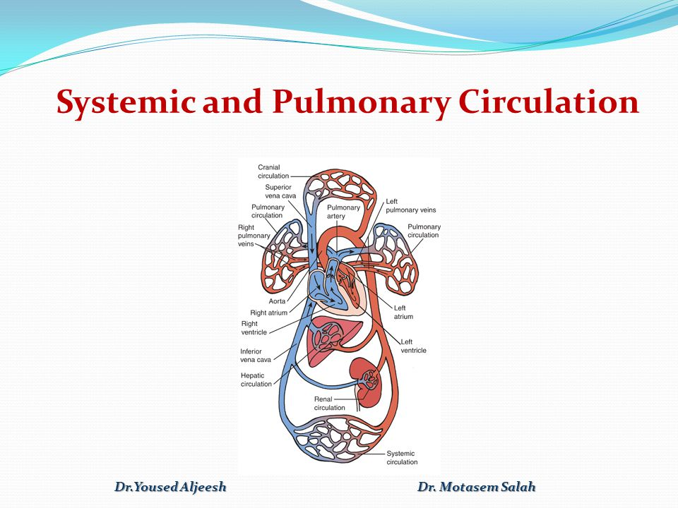 Nursing Process: The Care of the Patient with Peripheral Arterial Insufficiency: Diagnosis Ineffective peripheral tissue perfusion related to compromised circulation Chronic pain related to impaired ability of peripheral vessels to supply tissues with oxygen Risk for impaired skin integrity related to compromised circulation Deficient knowledge regarding self-care activities Dr.Yoused Aljeesh Dr.