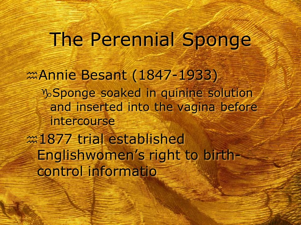 The Perennial Sponge h Annie Besant (1847-1933) g Sponge soaked in quinine solution and inserted into the vagina before intercourse h 1877 trial estab