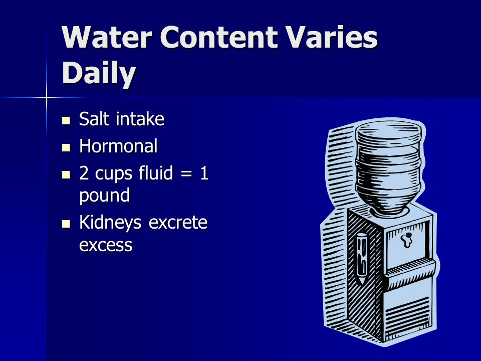 Functions of Water Almost universal solvent Almost universal solvent Dissolves Dissolves –Nutrients –Wastes –Urea –Carbon dioxide