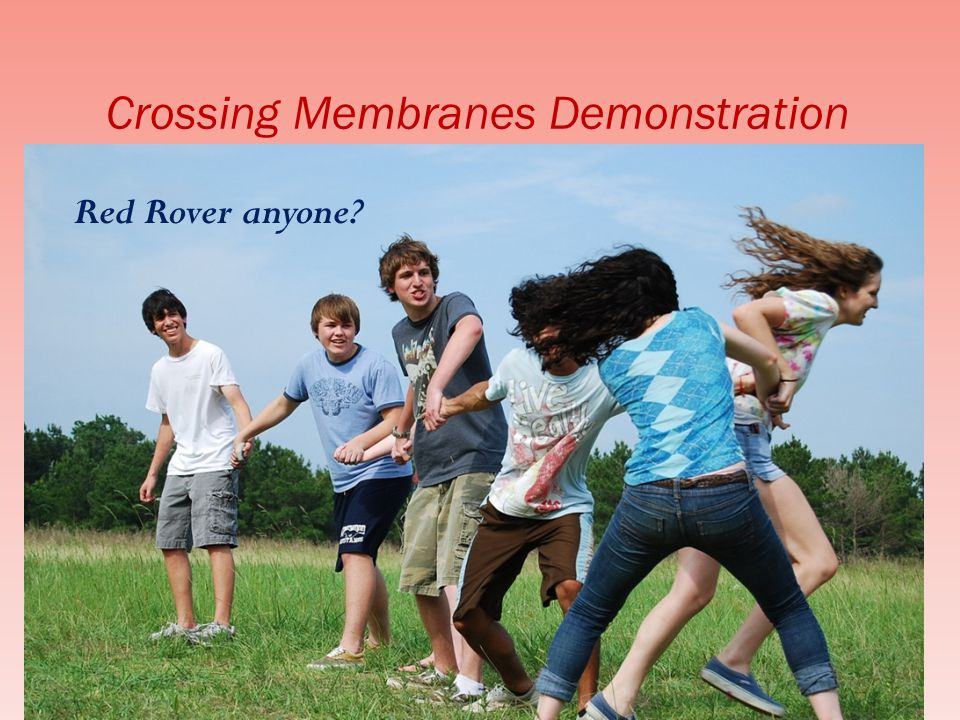 Crossing Membranes Demonstration Red Rover anyone?