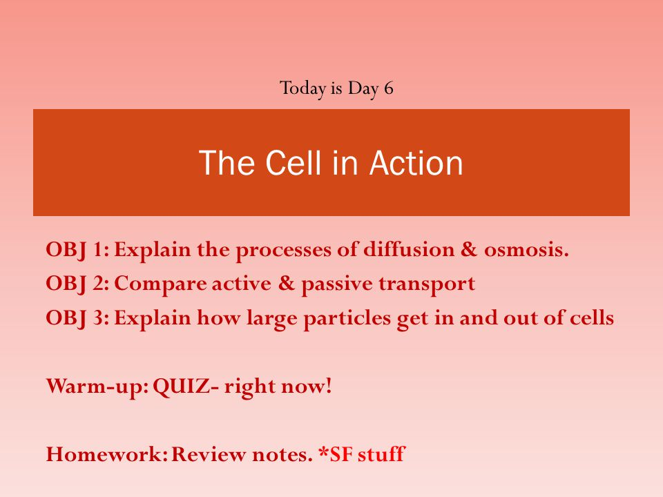 OBJ 1: Explain the processes of diffusion & osmosis.