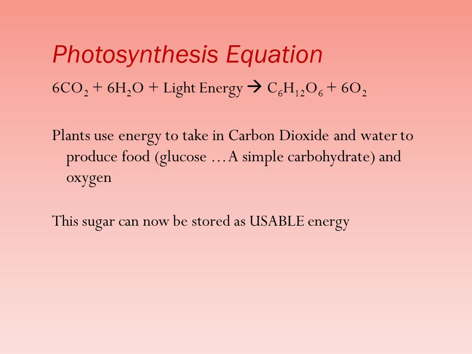 6CO 2 + 6H 2 O + Light Energy  C 6 H 12 O 6 + 6O 2 Plants use energy to take in Carbon Dioxide and water to produce food (glucose...