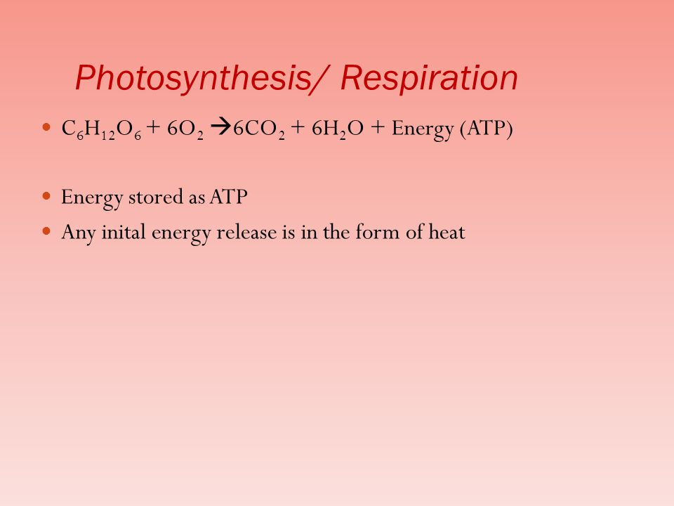 C 6 H 12 O 6 + 6O 2  6CO 2 + 6H 2 O + Energy (ATP) Energy stored as ATP Any inital energy release is in the form of heat Photosynthesis/ Respiration