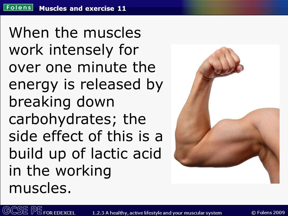 © Folens 2009 FOR EDEXCEL 1.2.3 A healthy, active lifestyle and your muscular system Muscles and exercise 11 When the muscles work intensely for over one minute the energy is released by breaking down carbohydrates; the side effect of this is a build up of lactic acid in the working muscles.
