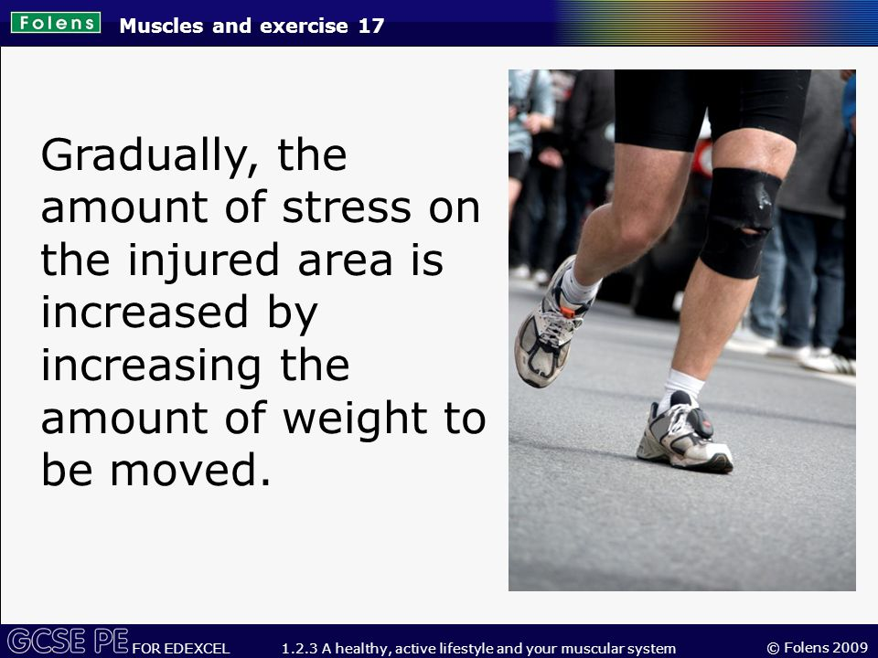 © Folens 2009 FOR EDEXCEL 1.2.3 A healthy, active lifestyle and your muscular system Gradually, the amount of stress on the injured area is increased by increasing the amount of weight to be moved.