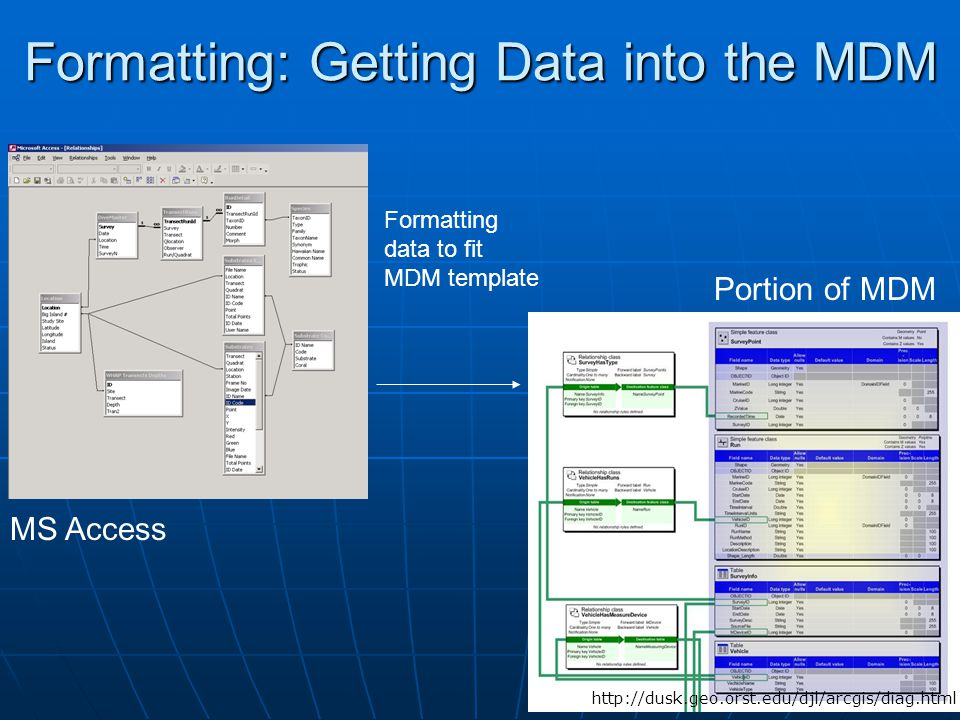 17 Formatting: Getting Data into the MDM Formatting data to fit MDM template http://dusk.geo.orst.edu/djl/arcgis/diag.html MS Access Portion of MDM
