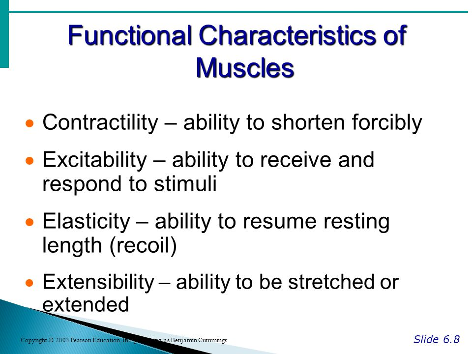 Functional Characteristics of Muscles Slide 6.8 Copyright © 2003 Pearson Education, Inc.