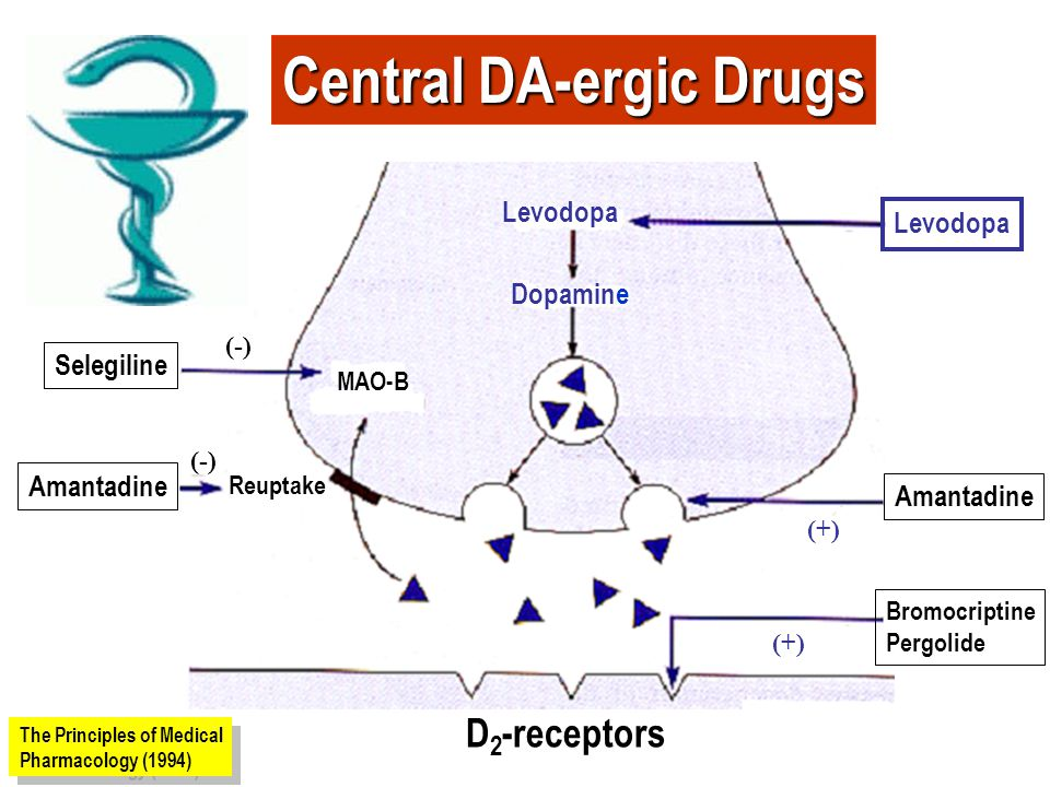 Objectives of antiparkinsonian pharmacotherapy The dopaminergic/cholinergic balance may be restored by two mechanisms.