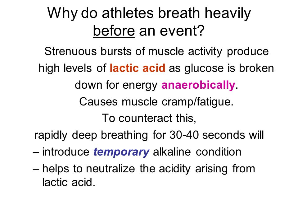 Why do athletes breath heavily before an event? Strenuous bursts of muscle activity produce high levels of lactic acid as glucose is broken down for e
