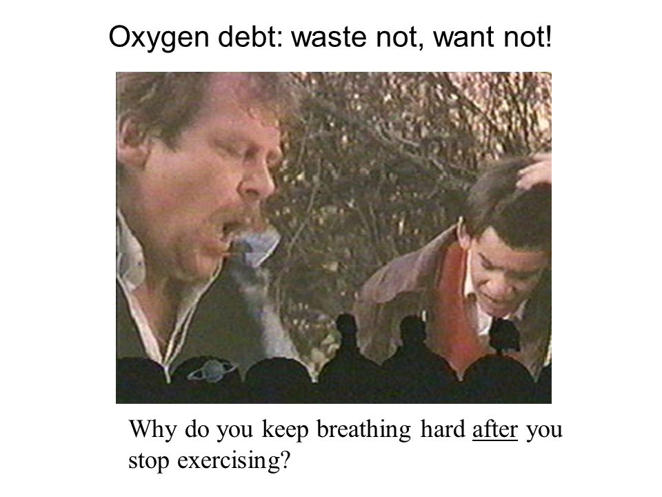 Oxygen debt: waste not, want not! Why do you keep breathing hard after you stop exercising?