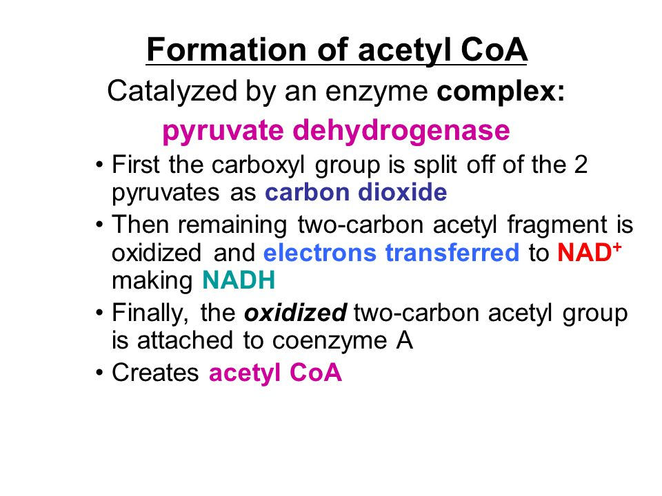 Formation of acetyl CoA Catalyzed by an enzyme complex: pyruvate dehydrogenase First the carboxyl group is split off of the 2 pyruvates as carbon diox