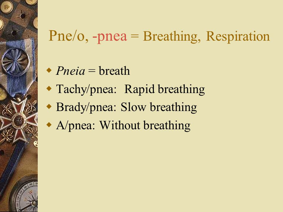 Pne/o, -pnea = Breathing, Respiration  Pneia = breath  Tachy/pnea: Rapid breathing  Brady/pnea: Slow breathing  A/pnea: Without breathing