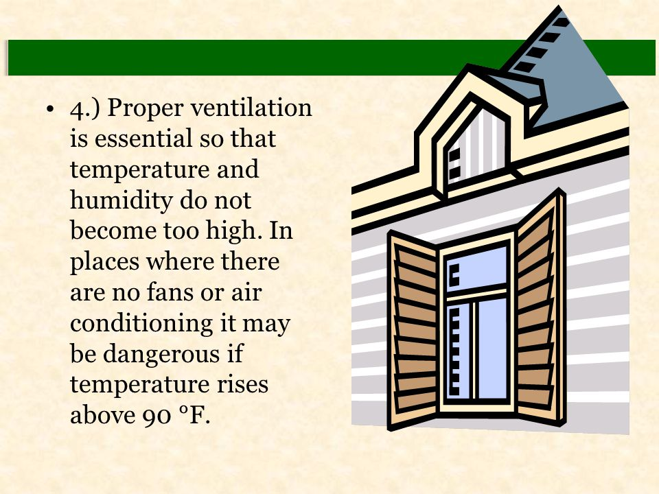 4.) Proper ventilation is essential so that temperature and humidity do not become too high. In places where there are no fans or air conditioning it