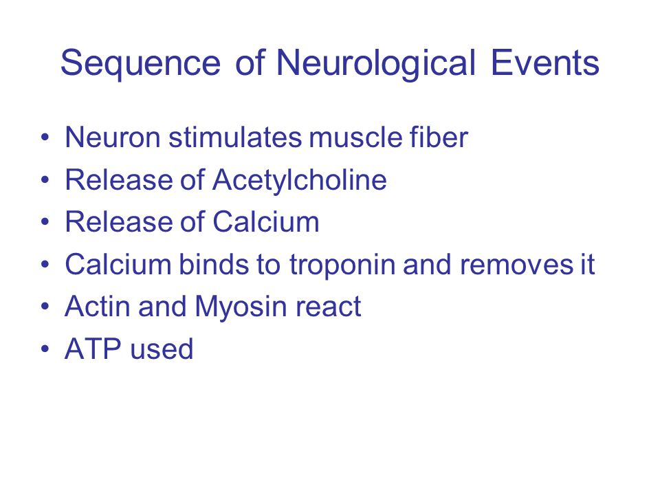 Sequence of Neurological Events Neuron stimulates muscle fiber Release of Acetylcholine Release of Calcium Calcium binds to troponin and removes it Actin and Myosin react ATP used