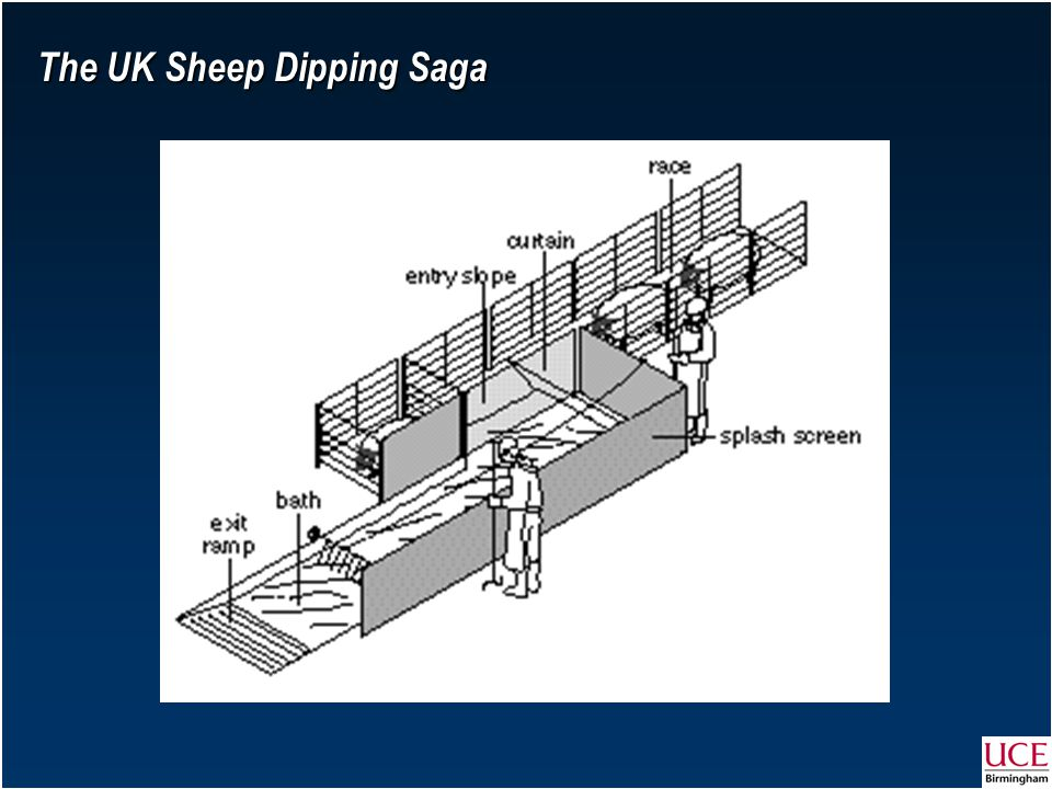The UK Sheep Dipping Saga