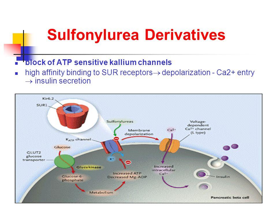 Sulfonylurea Derivatives block of ATP sensitive kallium channels high affinity binding to SUR receptors  depolarization - Ca2+ entry  insulin secretion