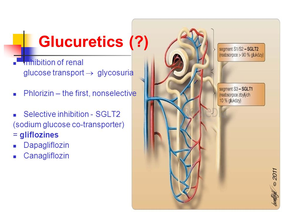 Glucuretics (?) Inhibition of renal glucose transport  glycosuria Phlorizin – the first, nonselective Selective inhibition - SGLT2 (sodium glucose co-transporter) = gliflozines Dapagliflozin Canagliflozin