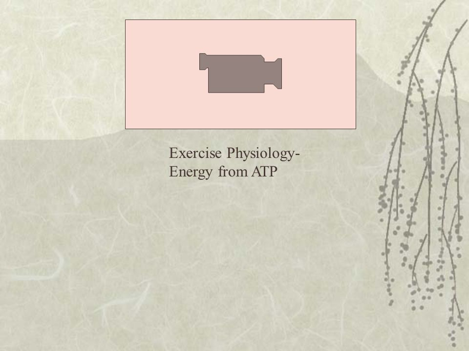 Exercise Physiology- Energy from ATP