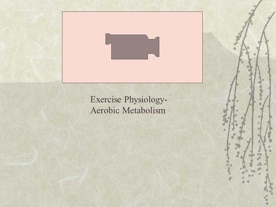 Exercise Physiology- Aerobic Metabolism