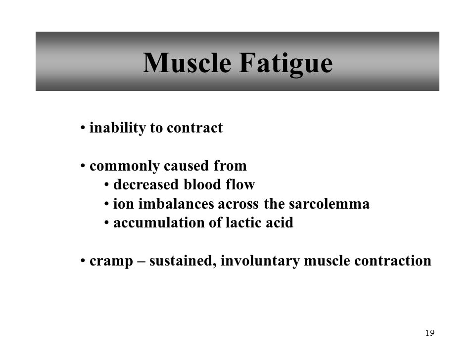 19 Muscle Fatigue inability to contract commonly caused from decreased blood flow ion imbalances across the sarcolemma accumulation of lactic acid cramp – sustained, involuntary muscle contraction