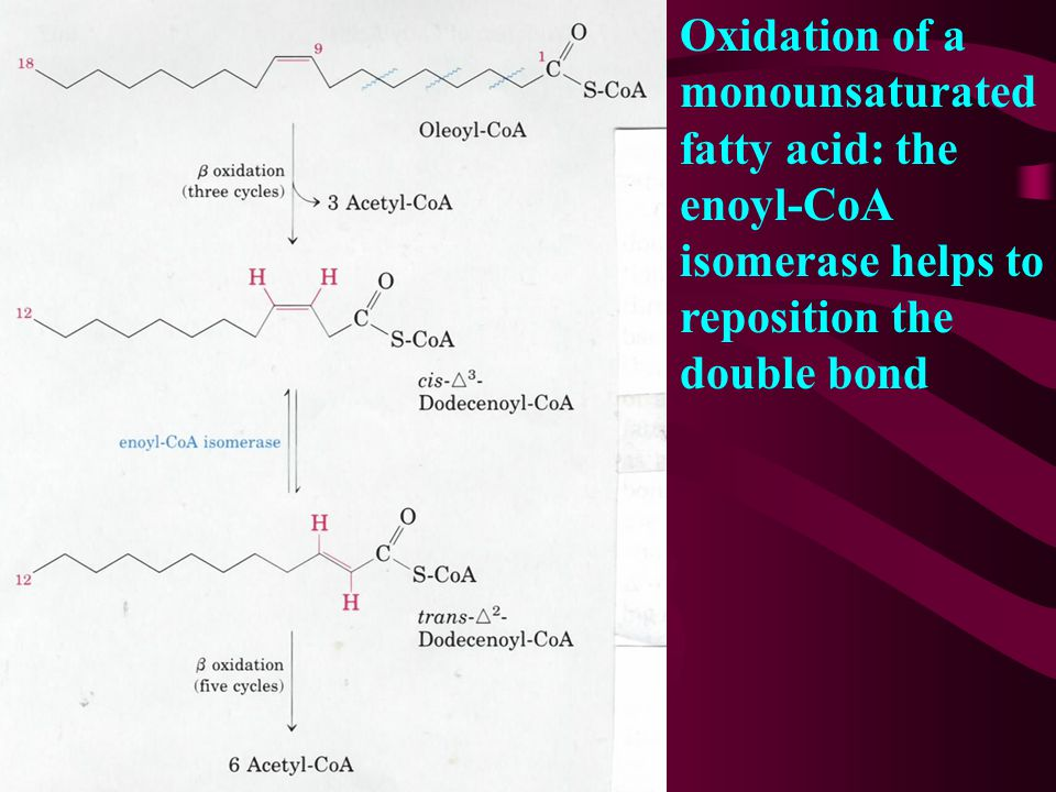 9. Oxidation of unsaturated fatty acids requires one or two auxiliary enzymes, an isomerase and a reductase The isomerase converts a cis-  3 double b