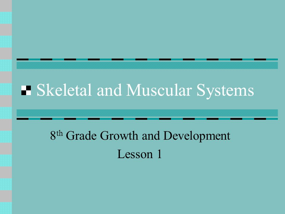 Skeletal and Muscular Systems 8 th Grade Growth and Development Lesson 1