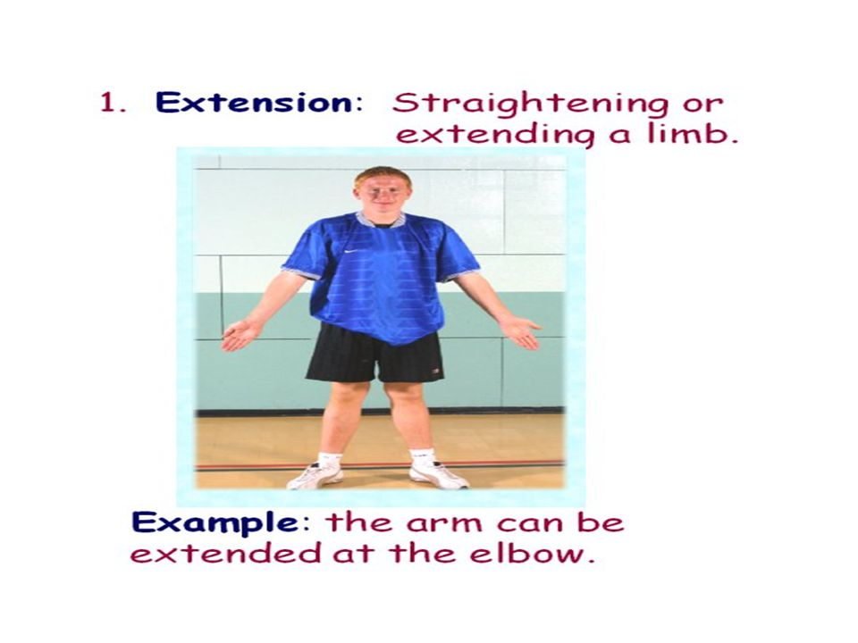 Movements of the body 1.Extension 2.Flexion 3.Abduction 4.Adduction 5.Rotation