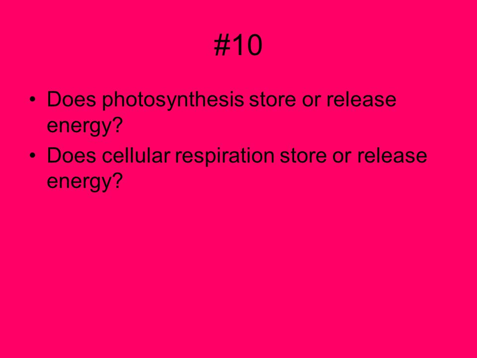 #10 Does photosynthesis store or release energy? Does cellular respiration store or release energy?