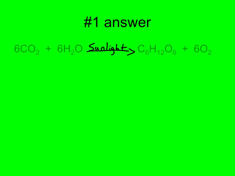 #1 answer 6CO 2 + 6H 2 O C 6 H 12 O 6 + 6O 2