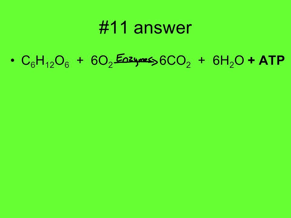 #11 answer C 6 H 12 O 6 + 6O 2 6CO 2 + 6H 2 O + ATP