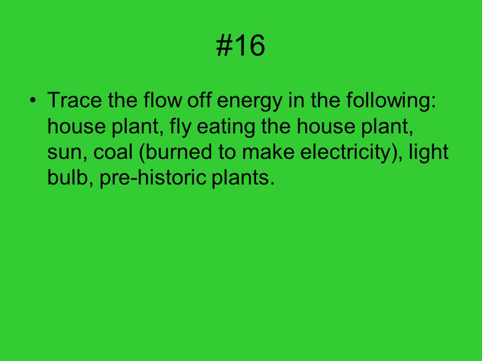 #16 Trace the flow off energy in the following: house plant, fly eating the house plant, sun, coal (burned to make electricity), light bulb, pre-historic plants.