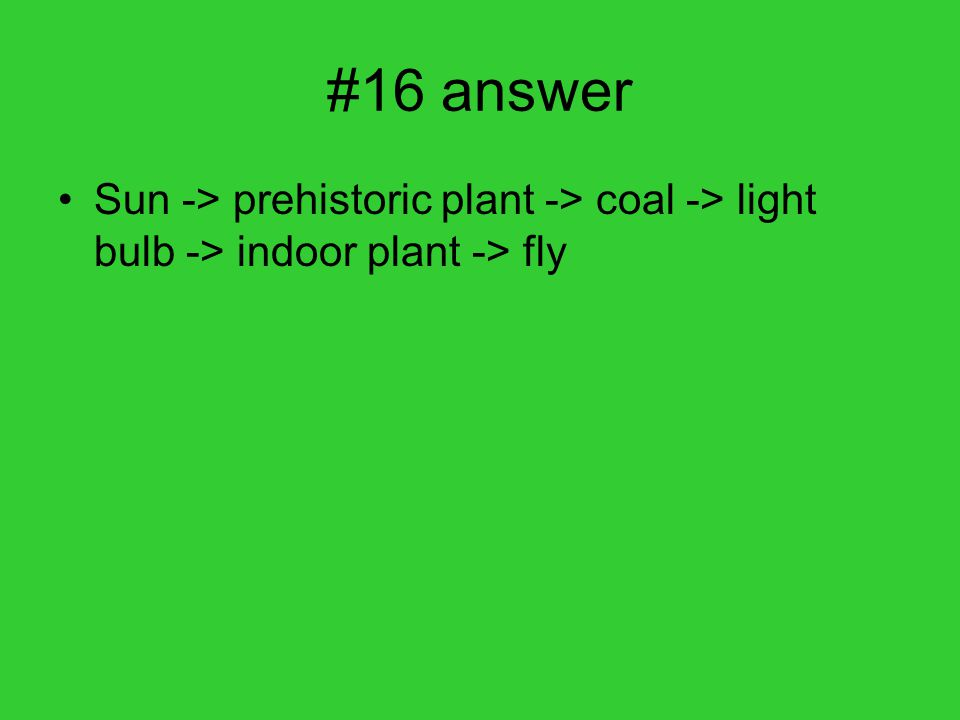#16 answer Sun -> prehistoric plant -> coal -> light bulb -> indoor plant -> fly