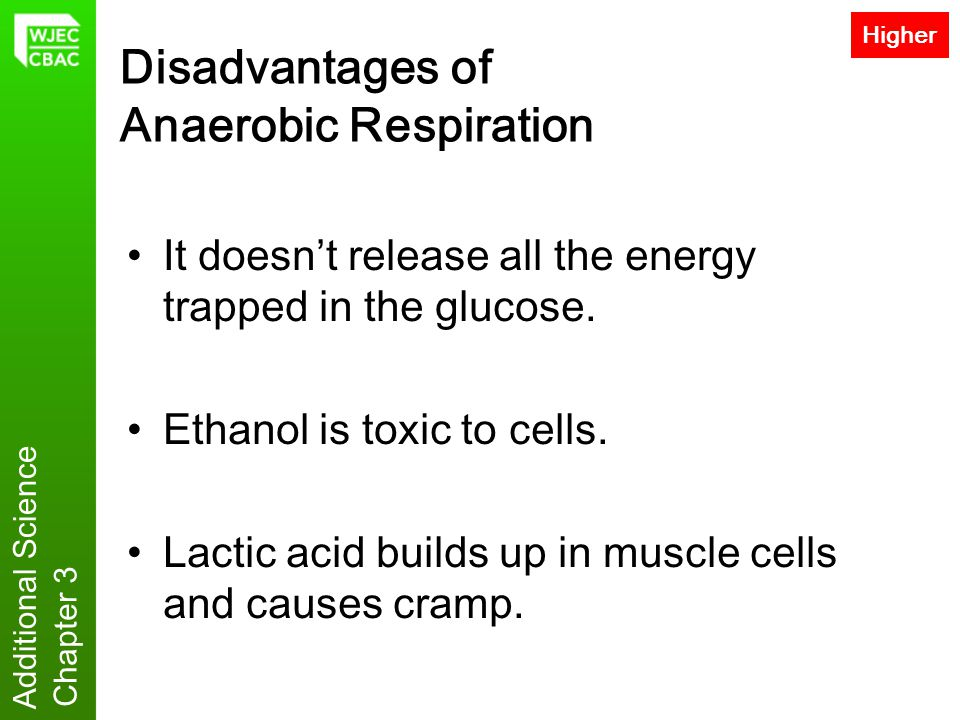 Additional Science Chapter 3 Disadvantages of Anaerobic Respiration It doesn't release all the energy trapped in the glucose. Ethanol is toxic to cell