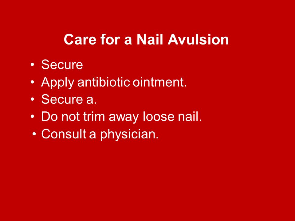 Care for a Nail Avulsion Secure Apply antibiotic ointment. Secure a. Do not trim away loose nail. Consult a physician.