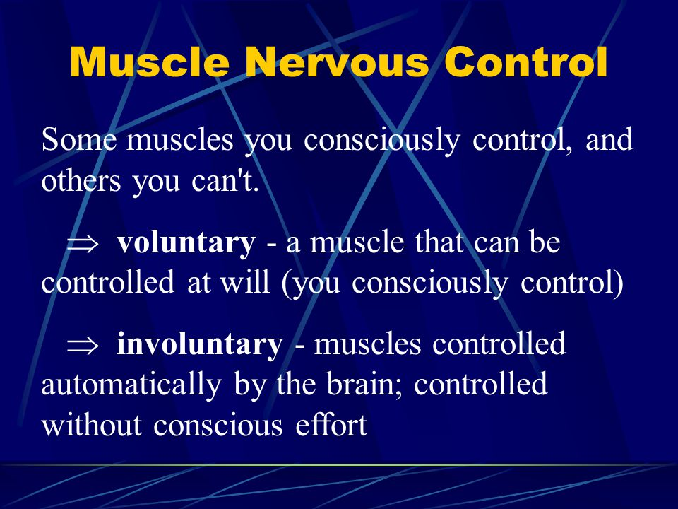 Muscle Nervous Control Some muscles you consciously control, and others you can't.  voluntary - a muscle that can be controlled at will (you consciou