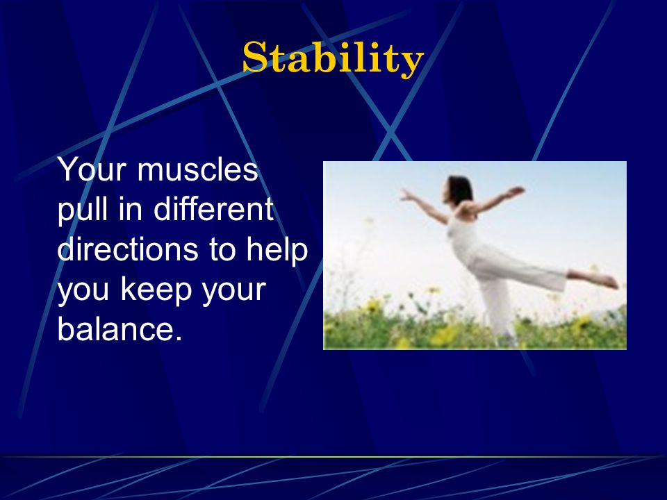 Stability Your muscles pull in different directions to help you keep your balance.