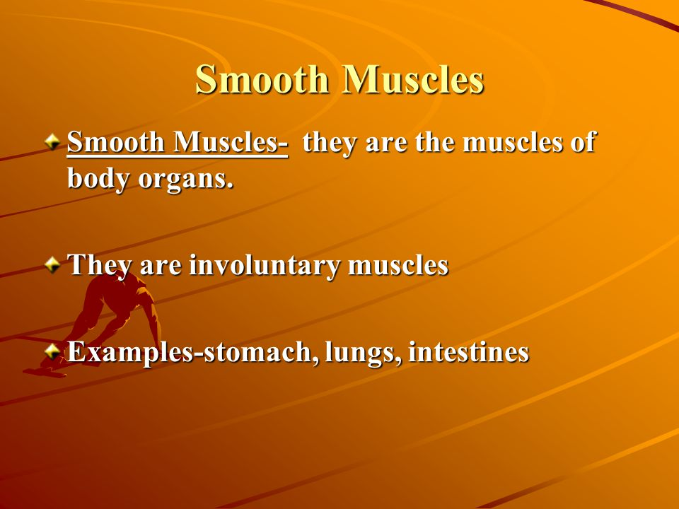 Smooth Muscles Smooth Muscles- they are the muscles of body organs. They are involuntary muscles Examples-stomach, lungs, intestines