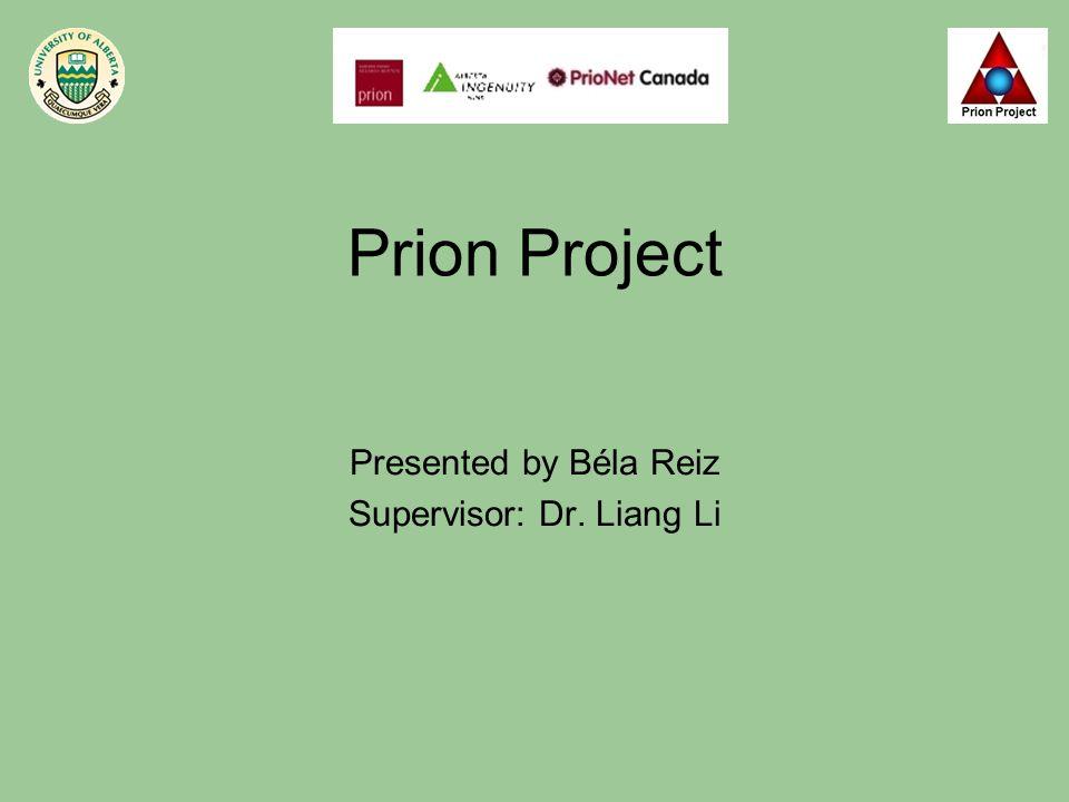 Prion Project Presented by Béla Reiz Supervisor: Dr. Liang Li