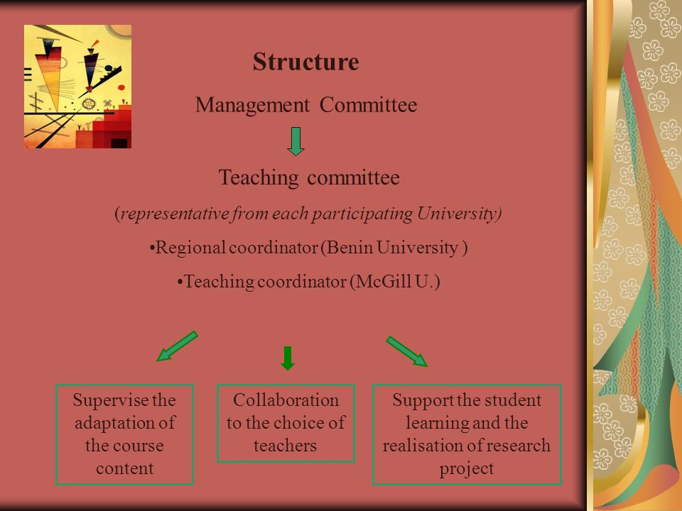 Teaching committee (representative from each participating University) Regional coordinator (Benin University ) Teaching coordinator (McGill U.) Struc