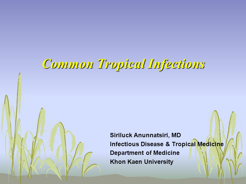 Common Tropical Infections Siriluck Anunnatsiri, MD Infectious Disease & Tropical Medicine Department of Medicine Khon Kaen University