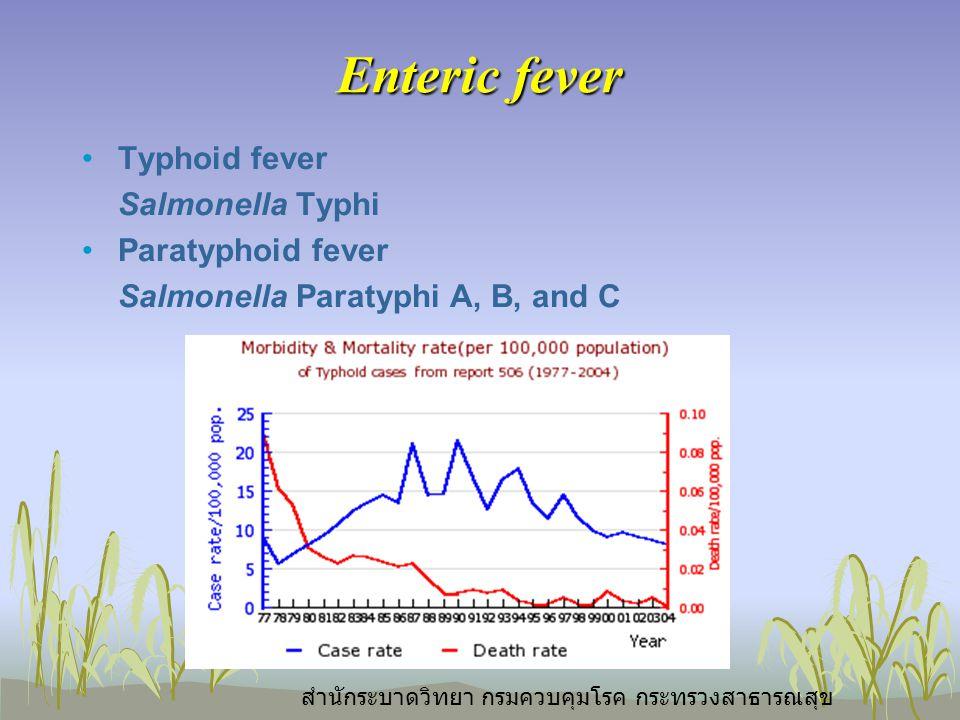 Enteric fever Typhoid fever Salmonella Typhi Paratyphoid fever Salmonella Paratyphi A, B, and C สำนักระบาดวิทยา กรมควบคุมโรค กระทรวงสาธารณสุข