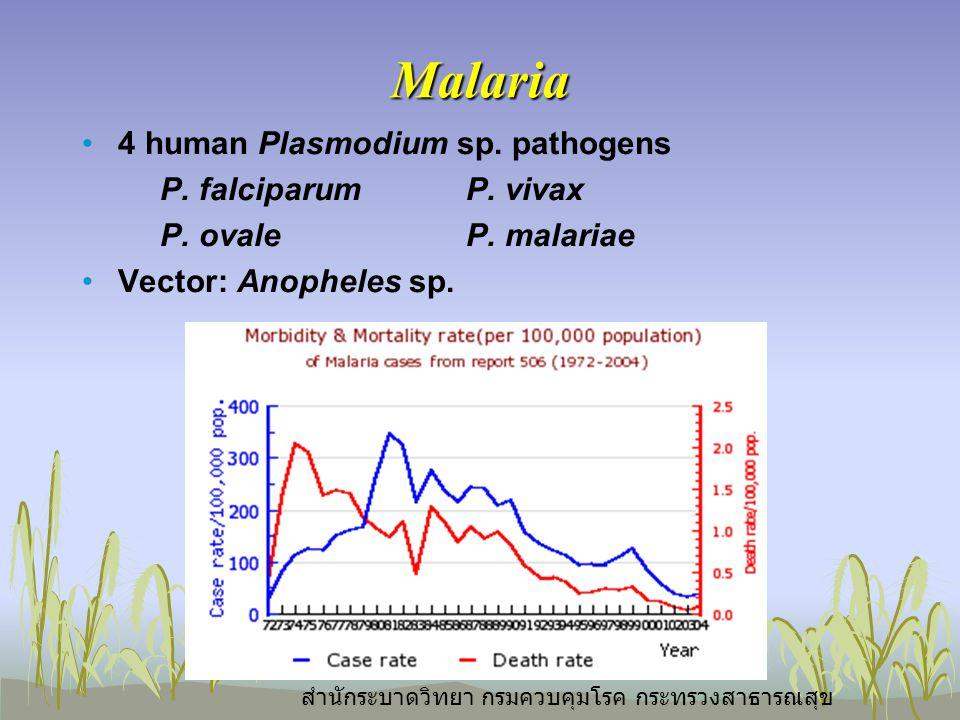 Malaria 4 human Plasmodium sp. pathogens P. falciparumP.