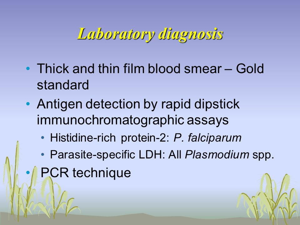 Laboratory diagnosis Thick and thin film blood smear – Gold standard Antigen detection by rapid dipstick immunochromatographic assays Histidine-rich protein-2: P.