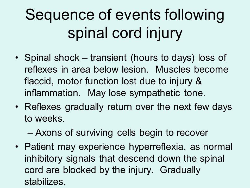 Sequence of events following spinal cord injury Spinal shock – transient (hours to days) loss of reflexes in area below lesion.