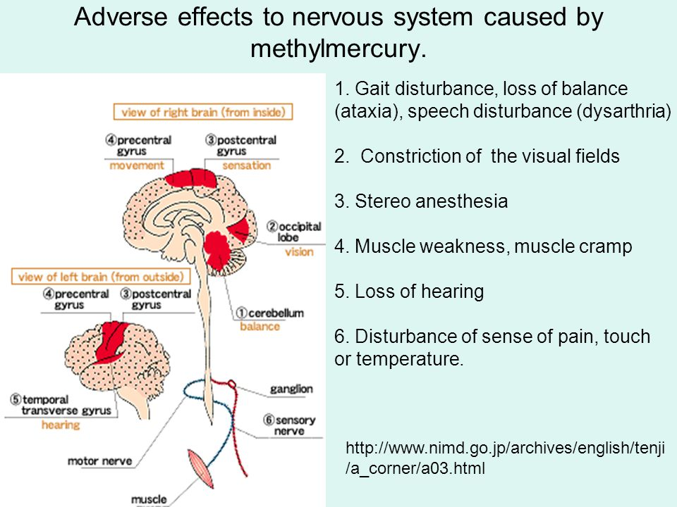 1. Gait disturbance, loss of balance (ataxia), speech disturbance (dysarthria) 2.