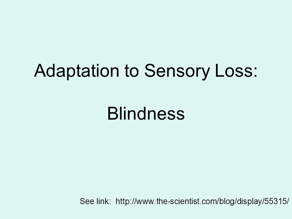 Adaptation to Sensory Loss: Blindness See link: http://www.the-scientist.com/blog/display/55315/