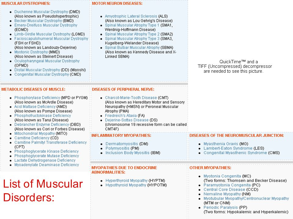 List of Muscular Disorders: